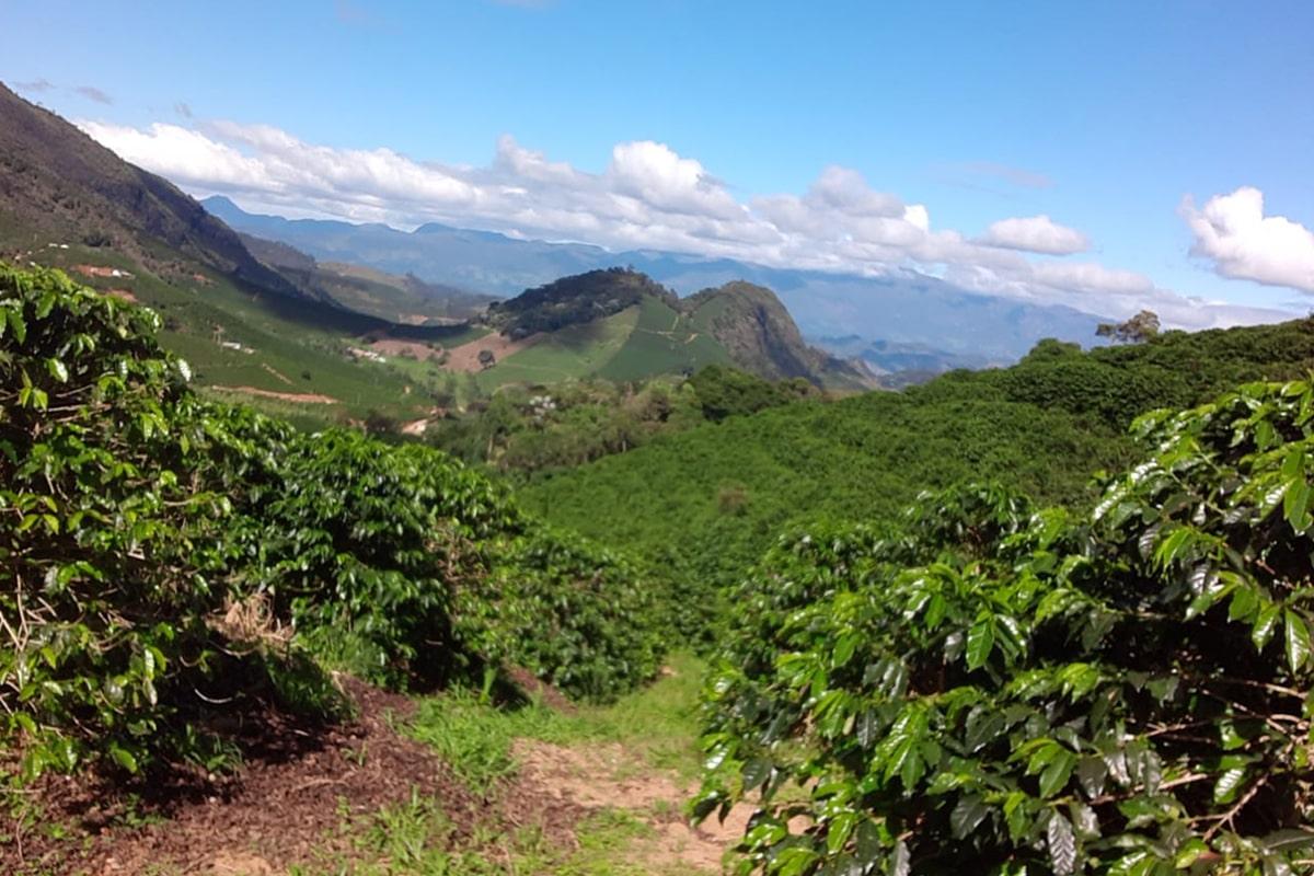 Brazilija SITIO CACHOEIRA
