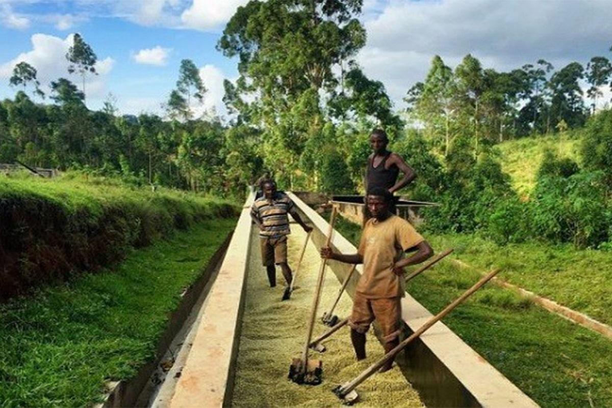 Burundi MASHA